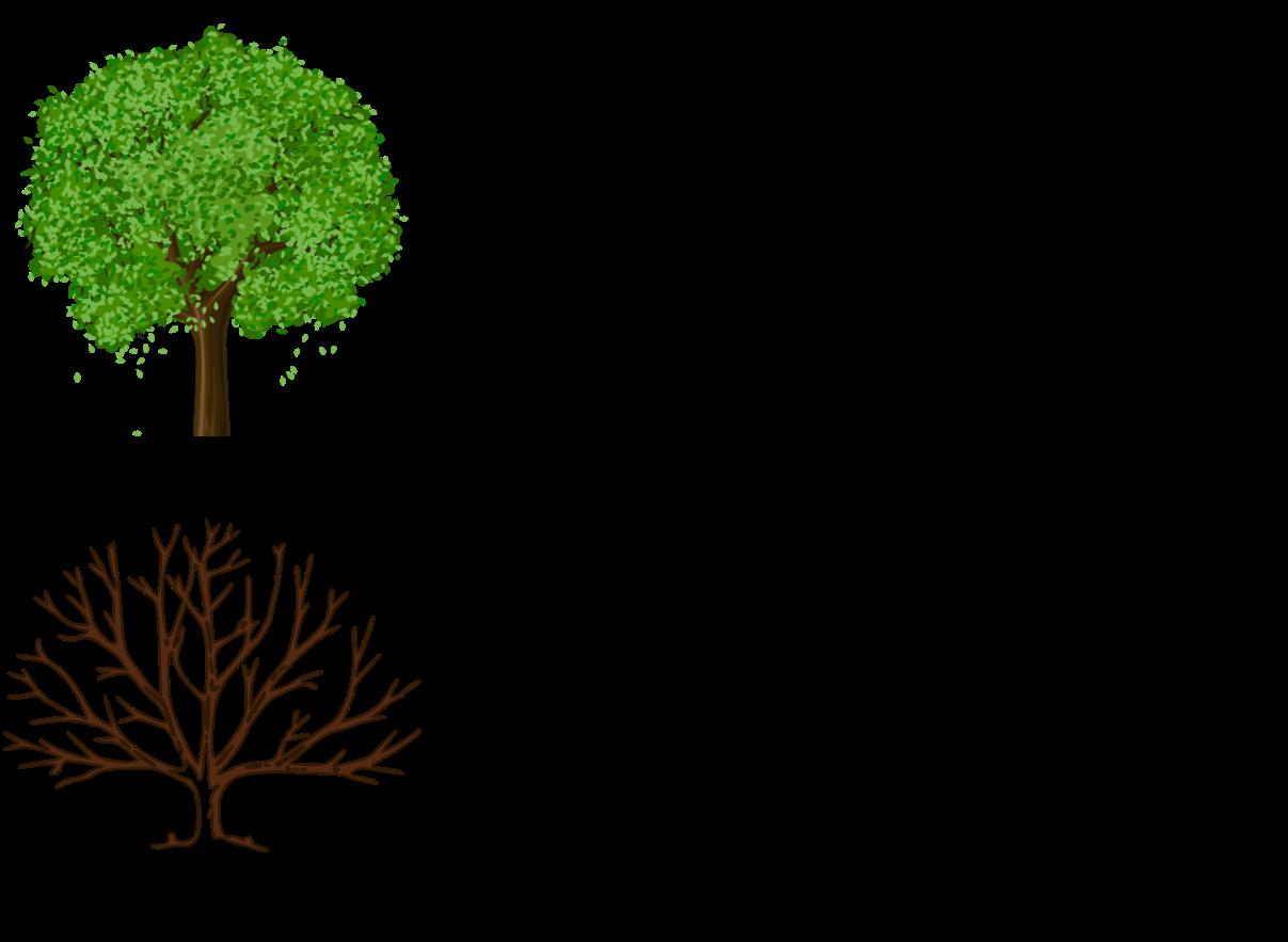 ESG Transformation Tips